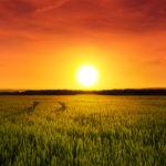 Die Bedeutung der Planeten – Die Sonne