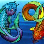 Horoskop 2019 – Für die Fische
