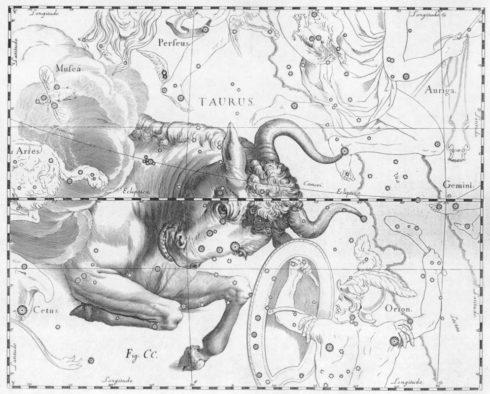 Horoskop 2018 für die Stiere